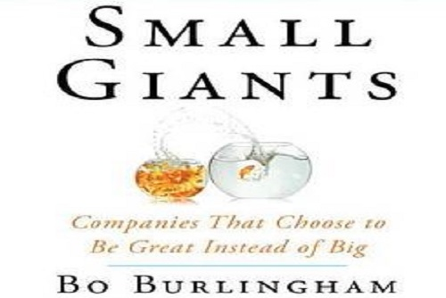 Make Your Business A Small Giant